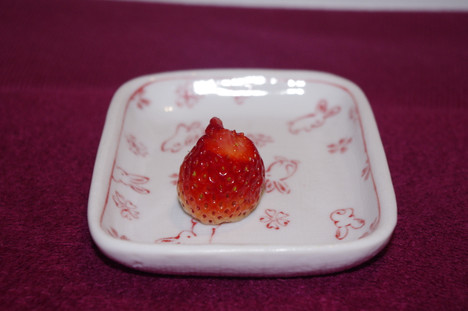 Nibbledstrawberry